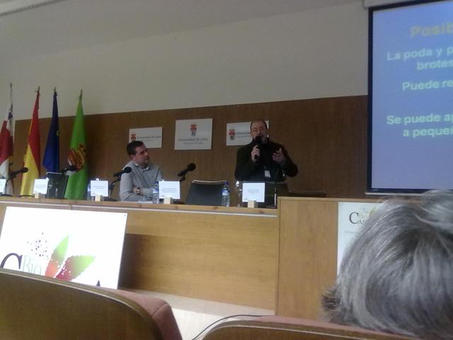 Biocastanea_Ponferrada_Spagna2011.jpg